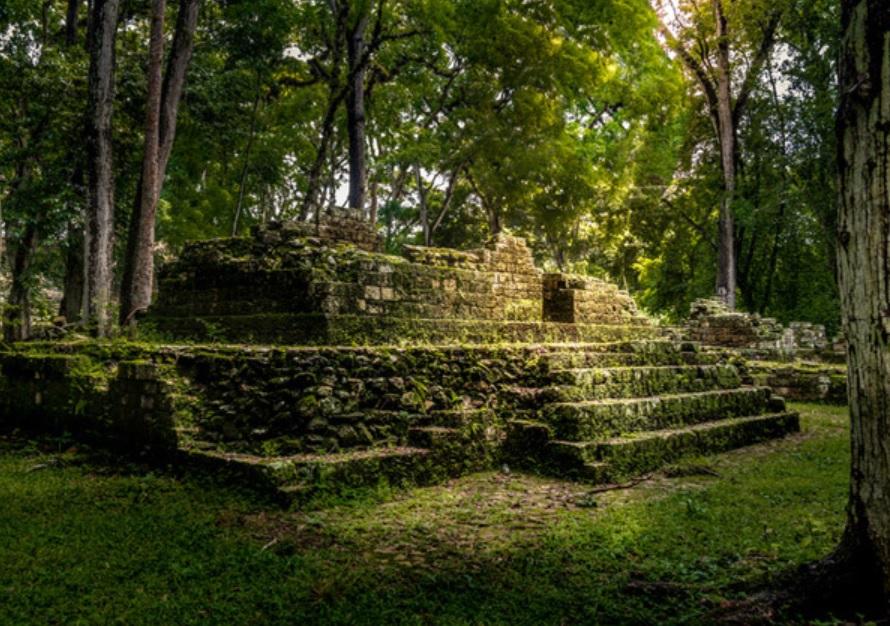 Fezes humanas antigas oferecem pistas sobre o fim da civilização maia - 2