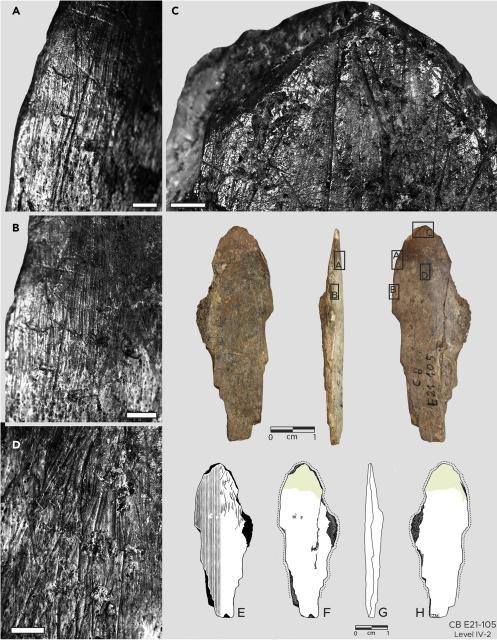 Moda de 120 mil anos: encontradas evidências mais antigas de fabricação de roupas - 1