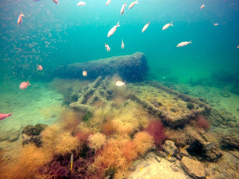 Destroços de navio usado para traficar maias escravizados são encontrados no México - 1
